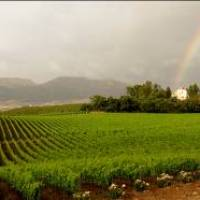 BAGLIO DI PIANETTO: UNO CHATEAU FRANCESE IN SICILIA