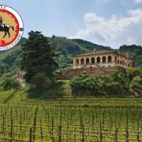 CS 22° Selezione Consorzio Vini Bianchi Doc e Docg Colli Euganei: I vincitori