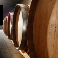 Milena Pepe ci fa scoprire i suoi vini #vino #irpinia #campania #taurasi
