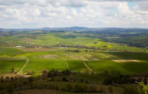 Cerbaiona si aggiudica le TRE STELLE della Guida Essenziale ai Vinid'Italia