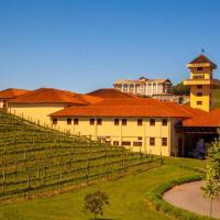 Brasile: itinerari enologici per gli appassionati di vino