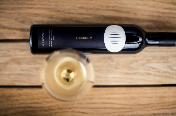 terminum-2012_undergassen_low