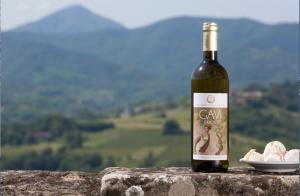 Il Consorzio Tutela del Gavi presenta la formula dell'eccellenza  (Wine + Food + Arts) x Tourism = La BuonaItalia