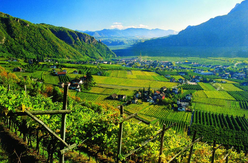 Nasce Alto Adige Wine Summit: il 22 e 23 settembre a Bolzano