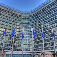 ETICHETTATURA DEL VINO: LA COMMISSIONE EUROPEA DISPOSTA AL DIALOGO