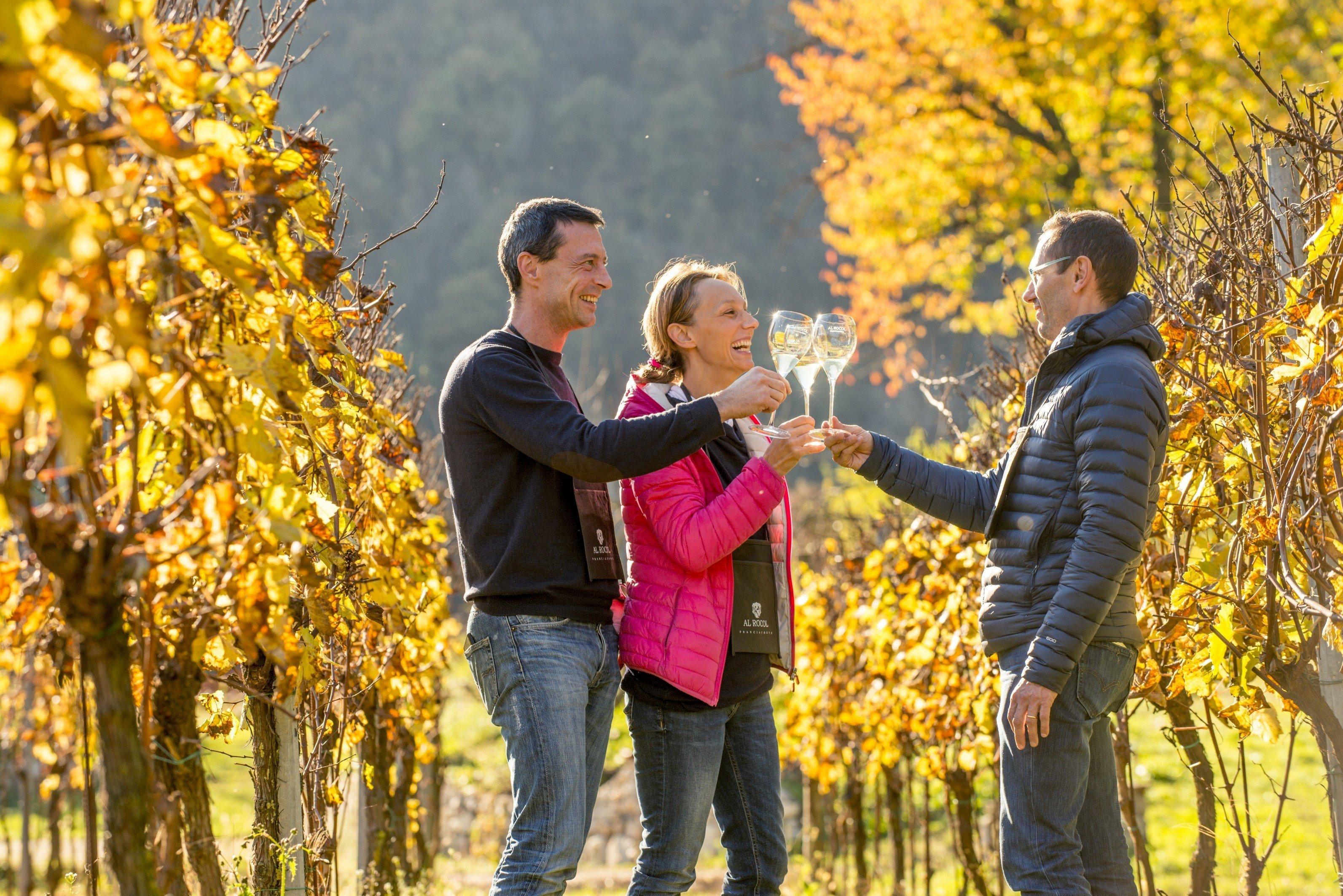 In Franciacorta Wine Trekking e Sparkling Picnic