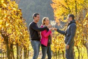 In Franciacorta Wine Trekking e SparklingPicnic