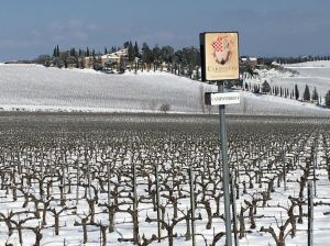 Neve sui vigneti toscani e i produttoriringraziano
