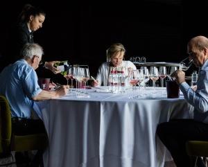 Aspettando Merano WineFestival, a caccia dei vini delfuturo.