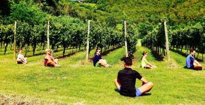 Nel vigneto con il Personal Wine Trainer  per ritrovare l'armonia di corpo espirito