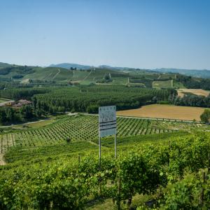 Food&Wine Tourism Forum: a Grinzane Cavour due giorni dedicati al futuro del turismo e dell'enogastronomia