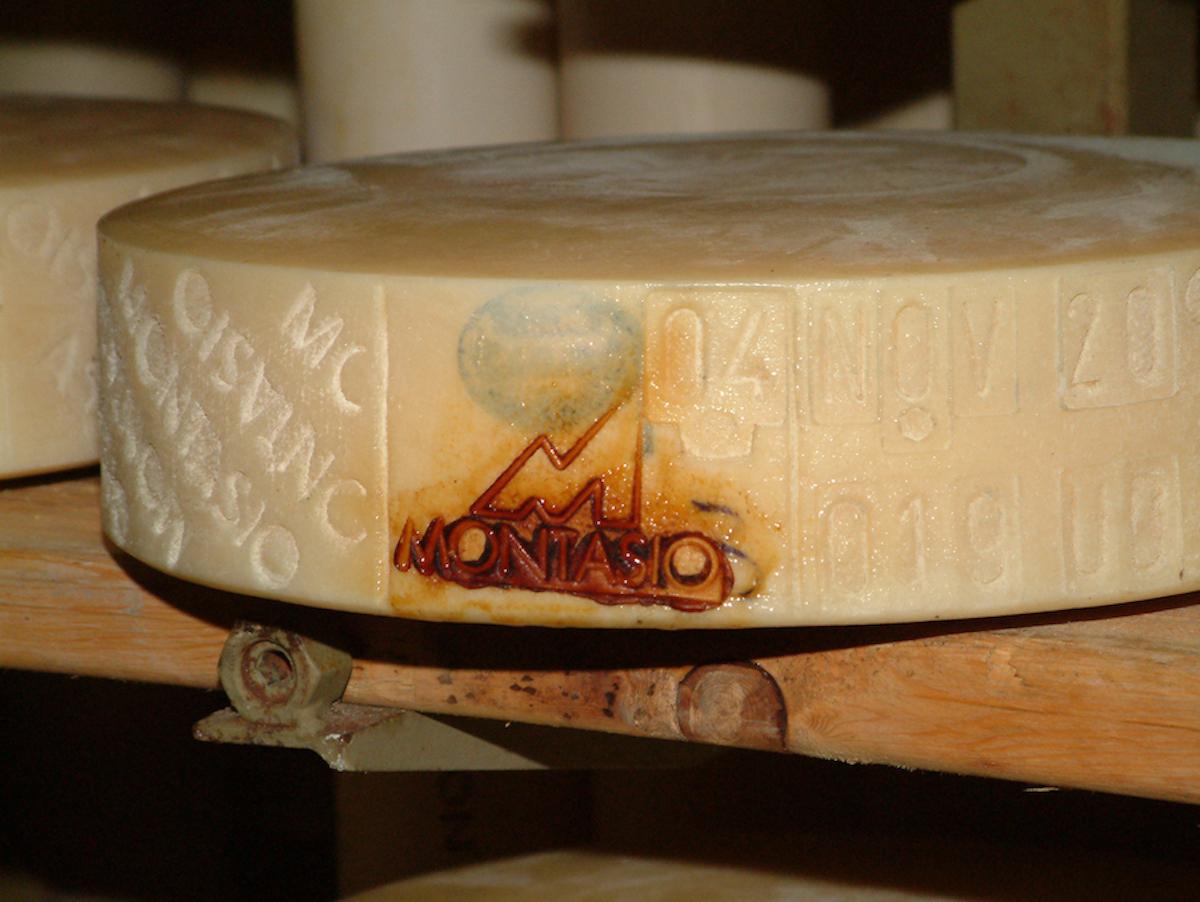 In Malga Montasio alla scoperta di sapori genuini e antiche tradizioni