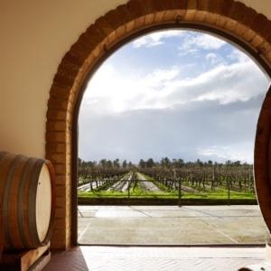 Villa Matilde Avallone, storia di un vino e di unafamiglia