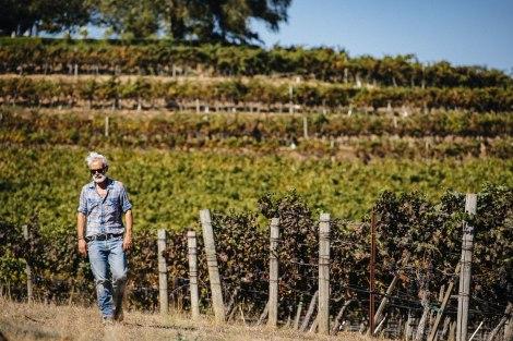 """Marco Simonit:  """"Italiani, volete lavorare in vigna?  Preparatevi, c'è lavoro pertutti!"""""""