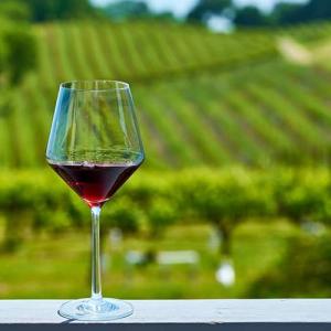 Crescono i vini dell'Emilia Romagna