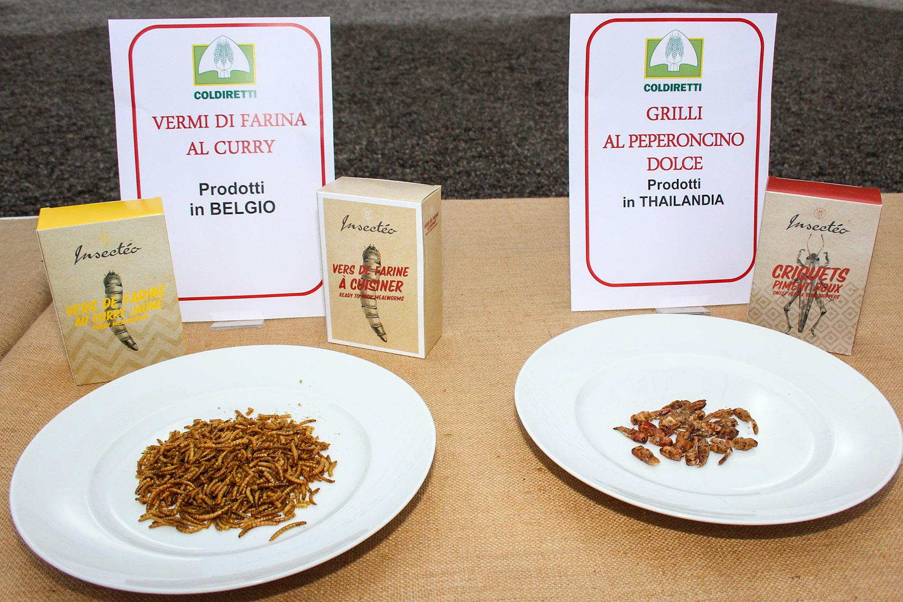 CONSUMI: COLDIRETTI, 54% ITALIANI BOCCIA OK EFSA A INSETTI NEL PIATTO