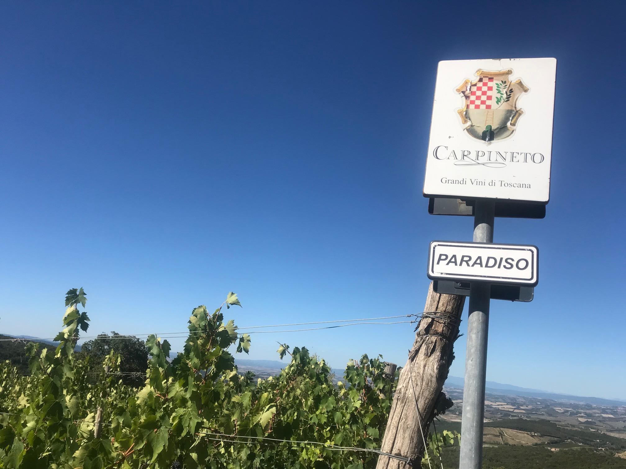 Debutto della prima Riserva Brunello di Montalcino di Carpineto e l'emozione già vola alta